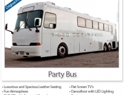 Party Bus (40 to 45 Passengers)